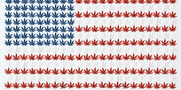Legalized Marijuana Will Be a Big Win for U.S. Pot Stocks. How to Bet on the Sector.