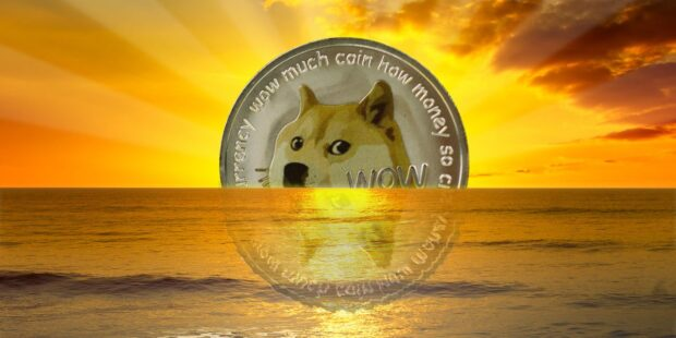 Dogecoin has surged 11,000% in 2021