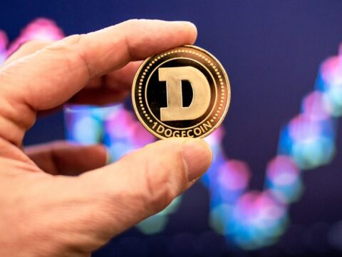 Galaxy's Novogratz says 'it's dangerous being a speculator' in dogecoin crypto
