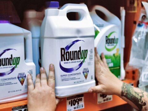 U.S. Judge Rejects Bayer's $2 Billion Deal to Settle Future Roundup Cancer Claims. The Stock Is Falling.