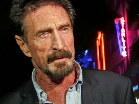 John McAfee was one of the original genius-but-bizarre CEOs — and Elon Musk should take note