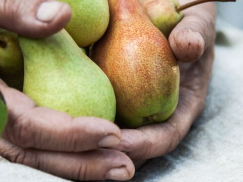 This 'fruit pyramid' can help you build the retirement that's right for you